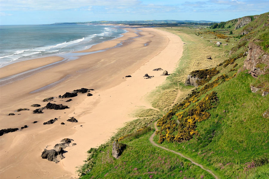 St Cyrus Beach and NNR